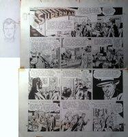BORING, WAYNE - Superman #501 Sunday + border drawing, 6/5 1949 Comic Art