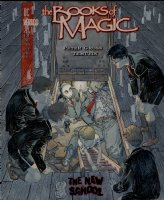 KALUTA, MIKE - Books of Magic #53 painted cover, w/ logo overlay. Tim Hunter in  Comic Art