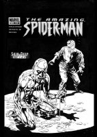 DEODATO, MIKE - Amazing Spider-Man #516 cover, Skin Deep, part 2 Comic Art