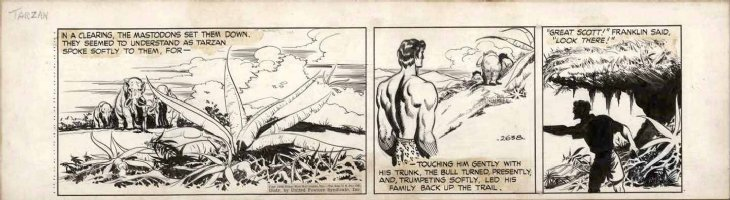 HOGARTH, BURNE ghosting with DAN BARRY - Tarzan daily #2638 1948, Lost World climax - Tarzan & Mastodons on march Comic Art