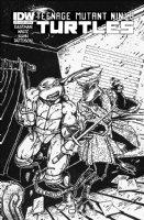EASTMAN, KEVIN - Teenage Mutant Ninja Turtle vol.2 #13 cover Comic Art