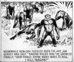 FOSTER, HAL - Tarzan Sunday Ape panel, 1/19 1936 Comic Art